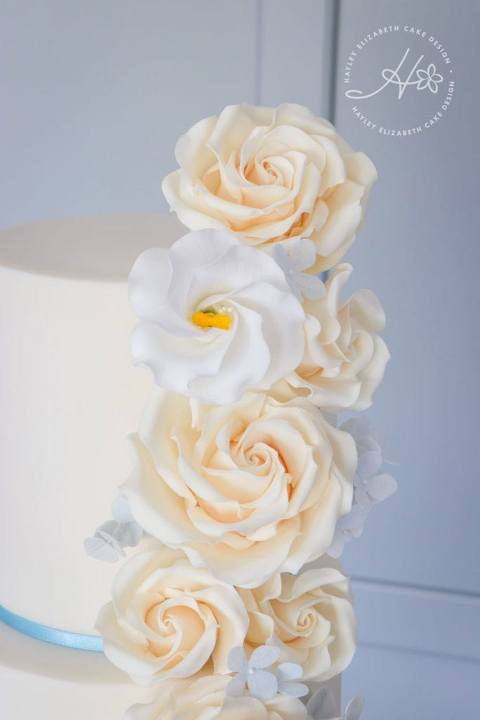Ivory roses wedding cake, white and blue wedding cake, luxury wedding cake, elegant wedding cake, wedding cake inspiration, cascading sugar flowers, Hampshire and Dorset cake designer